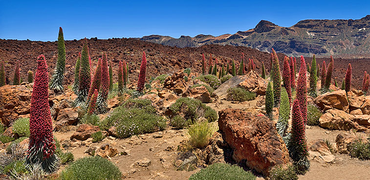 tenerife_places_a.jpg